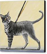Brushing The Cat - No. 2 Canvas Print by Crista Forest