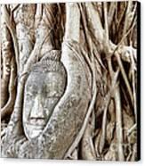 Buddha Head In Tree Wat Mahathat Ayutthaya  Thailand Canvas Print by Fototrav Print