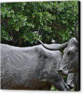 Bull Market Quadriptych 2 Of 4 Canvas Print by Christine Till