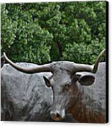 Bull Market Quadriptych 3 Of 4 Canvas Print by Christine Till