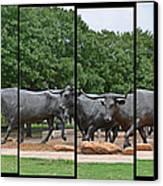 Bull Market Quadriptych Canvas Print by Christine Till