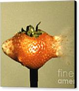 Bullet Piercing A Strawberry Canvas Print by Gary S. Settles