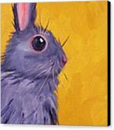 Bunny Canvas Print by Nancy Merkle
