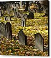 Buried In Boston Canvas Print by Bruce Carpenter