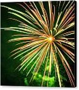 4th Of July Fireworks 6 Canvas Print by Howard Tenke