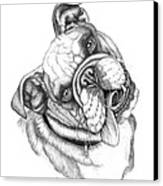 Buster Canvas Print by Catherine Garneau