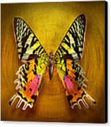 Butterfly - Butterfly Of Happiness  Canvas Print by Mike Savad