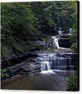Buttermilk Waterfalls Canvas Print by David Simons
