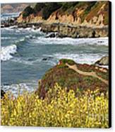 California Coast Overlook Canvas Print by Carol Groenen