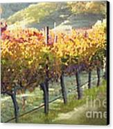 California Vineyard Series Morning In The Vineyard Canvas Print by Artist and Photographer Laura Wrede