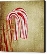 Candy Canes Canvas Print by Kim Hojnacki