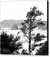 Cannon Beach Canvas Print by David Patterson