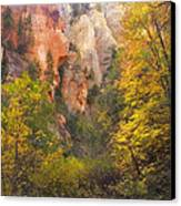 Canyon Kaleidoscope  Canvas Print by Peter Coskun