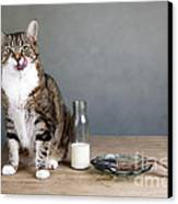 Cat And Herring Canvas Print by Nailia Schwarz
