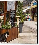 Cat And Restaurant Concarneau Brittany France Canvas Print by Colin and Linda McKie