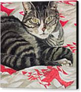 Cat On Quilt  Canvas Print by Anne Robinson