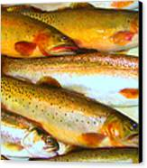 Catch Of The Day - Painterly - V2 Canvas Print by Wingsdomain Art and Photography