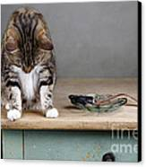 Caught In The Act Canvas Print by Nailia Schwarz