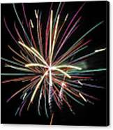 Celebration Canvas Print by Gene McKinley