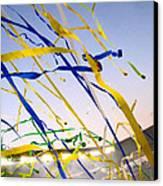 Celebration Canvas Print by Jon Berry