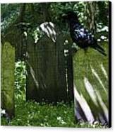 Cemetery With Ancient Gravestones And Black Crow  Canvas Print by Georgia Fowler