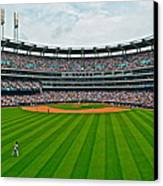 Center Field Canvas Print by Frozen in Time Fine Art Photography