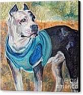 Chance  Canvas Print by Mindy Sue Werth