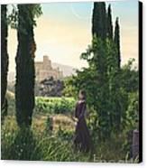 Chardonnay Wine Country Fantasy Canvas Print by Stu Shepherd