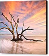 Charleston Sc Sunset Folly Beach Trees - The Calm Canvas Print by Dave Allen