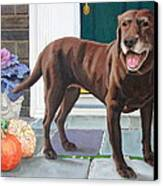 Chelsea At The Door Canvas Print by Sandra Chase