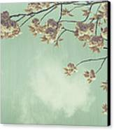 Cherry Blossom In Fulwood Park Canvas Print by Georgia Fowler