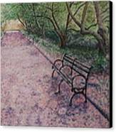 Cherry Blossom Pathway Canvas Print by Patsy Sharpe