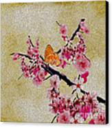 Cherry Blossoms Canvas Print by Cheryl Young