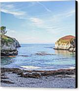 China Cove Point Lobos Canvas Print by Brad Scott