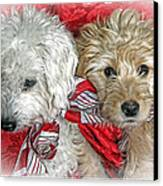 Christmas Puppy Canvas Print by Bob Hislop