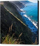 Cliff Grass At Big Sur Canvas Print by Adam Pender