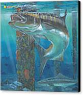 Cobia Strike In0024 Canvas Print by Carey Chen