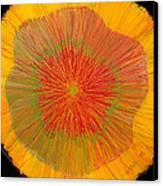 Color Burst 4 Canvas Print by Anna Skaradzinska