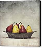 Color Does Not Matter Canvas Print by Priska Wettstein