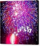Colorado Fireworks  Canvas Print by Trisha Buchanan