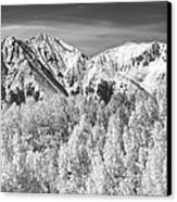 Colorado Rocky Mountain Autumn Magic Black And White Canvas Print by James BO  Insogna