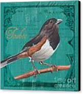Colorful Songbirds 3 Canvas Print by Debbie DeWitt