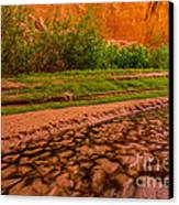 Colorful Streambed - Coyote Gulch - Utah Canvas Print by Gary Whitton