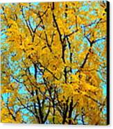 Colors Of Fall - Smatter Canvas Print by Deborah  Crew-Johnson