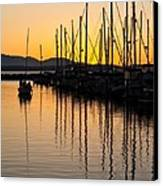 Coming In Canvas Print by Mike Reid