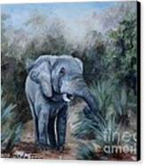 Coming Through Canvas Print by Brenda Thour
