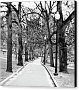 Commons Park Pathway Canvas Print by Scott Pellegrin