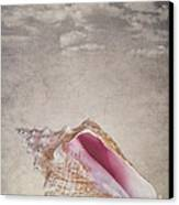 Conch Shell On Vintage Background Canvas Print by Jane Rix