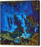 Coral Reef Canvas Print by Tom Druin