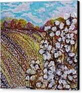 Cotton Fields In Autumn Canvas Print by Eloise Schneider
